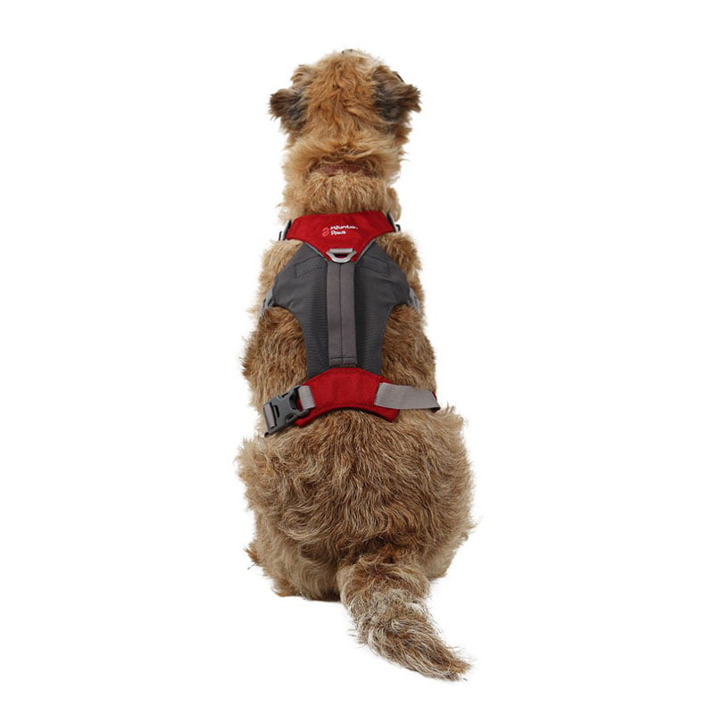 Mountain Paws Dog Hiking Harness